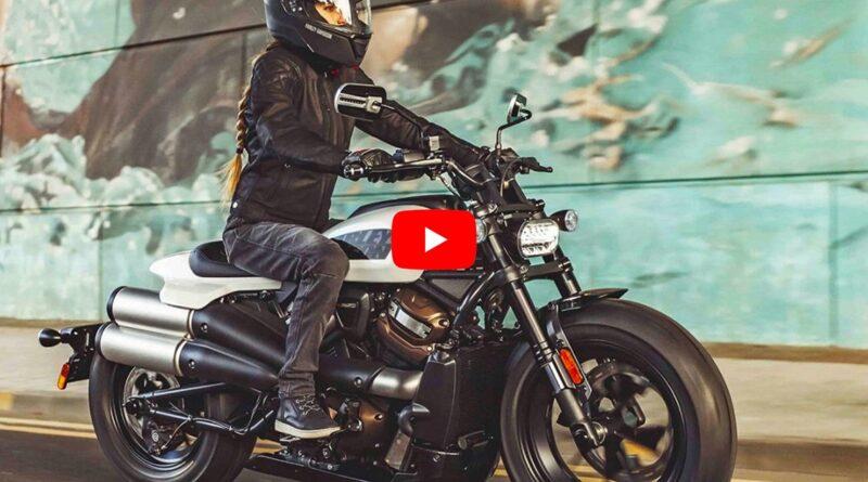 Harley-Davidson Sportster S 2021: un lobo con piel de lobo